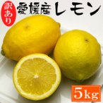 訳あり・愛媛産レモン5kg 約35〜45玉「安心・安全がうれしい国産レモン!」送料無料