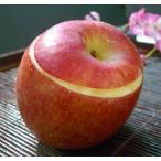 お歳暮ギフト2016にも! 青森産・高級リンゴ『ふじ』使用・まるごとりんごシャーベット3個セット