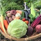 野菜ボックス びわ湖が恋する野菜たち 環境負荷の少ない農法 滋賀県産 ご当地モール