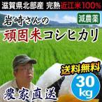 米 お米 30kg コシヒカリ 滋賀県産 白米 玄米 岩崎農園 送料無料