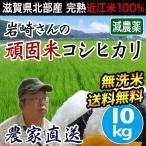 米 送料無料 滋賀産コシヒカリ 10kg 無洗米 玄米 白米  減農薬 減化学肥料  安全な近江米 岩崎農園