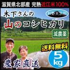 米 滋賀産 杉野天水田のコシヒカリ 白米 5kg 送料無料 減農薬 近江米 けやきのした農園