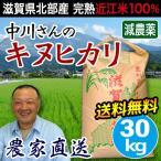 米 お米 30kg キヌヒカリ 滋賀県産 白米 玄米 農工舎 送料無料