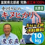 米 送料無料 滋賀産 キヌヒカリ 10kg (5kg×2) 減農薬 白米 玄米 低農薬 近江米 きぬひかり 農工舎