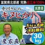 米 お米 30kg  5kg×6袋 キヌヒカリ 滋賀県産 白米 玄米 農工舎 送料無料
