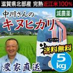 米 お米 5kg キヌヒカリ 滋賀県産 白米 玄米 農工舎 送料無料