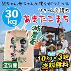 2020年度 新米 米 お米 30kg 10kg×3袋 あきたこまち 滋賀県産 白米 玄米 ファーム虎姫 送料無料