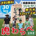 2020年度 米 お米 30kg 10kg×3袋 コシヒカリ 虎わらべ 滋賀県産 白米 玄米 ファーム虎姫 送料無料