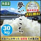 28年度 新米 米 滋賀産 無農薬 夢ごこち 30kg 送料無料 玄米 無農薬 無化学肥料 安心の近江米 吉田農園 琵琶近江どっとこむ