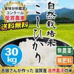 自然栽培米こしひかり 30kg 新米 無肥料 無農薬 玄米 白米 滋賀県産 送料無料 近江米 吉田農園