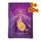 松種子エキスブラックSPN 五葉松の種子を使ったサプリメント(1袋90粒入)送料無料