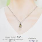 遺骨ペンダント 遺骨ネックレス 手元供養 ペット 愛猫 メッセージ 肉球 イラスト 猫 キャット ネコ 365 ハート ステンレス 316L  男女兼用