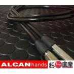 アクセルワイヤー エリミネーター250 LX SE 10cm ロング JB032A10 メール便可