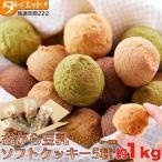 おからクッキー 豆乳 ダイエット食品 低カロリー スイーツ おからスイーツ 豆乳おからクッキー ヘルシー お菓子 325101