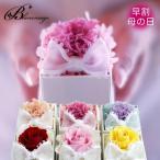 花 プレゼント  限定ギフト プリザーブドフラワー カーネーション 送料無料 リボンパールボックス
