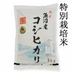 魚沼産コシヒカリ新米 極上 特別栽培米 3kg  3キロ  うるち米(精白米) コシヒカリ