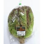 【フルヤの有機野菜】有機サニーレタス 1株 冷蔵
