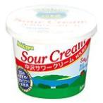 中沢乳業 サワークリーム(90ml)