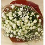 バラの花束/ウィット&かすみ草