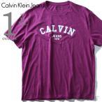 大きいサイズ メンズ CALVIN KLEIN JEANS カルヴァンクラインジーンズ デザイン半袖Tシャツ USA直輸入 41t7156