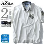 ショッピングサイズ 大きいサイズ メンズ AZ DEUX 刺繍デザイン半袖ポロシャツ GREAT SWAMP 春夏新作 azpr-170288