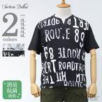 大きいサイズ メンズ SARTORIA BELLINI スラブヘンリーネック半袖Tシャツ azt-160276