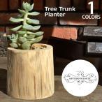 アンソロポロジー Anthropologie 植木鉢 鉢カバー tree Trunk Planter