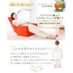 ショッピングマッサージ ダイエット プリミン エアースリムキューブ PLIMIN AIR SLIM CUBE 骨盤ケア×エアーの力 InRed別冊 座椅子 マッサージチェア