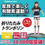トランポリン / 【送料無料】トランポリン 有酸素運動 バランス ジャンプ 子供 遊具 ダイエット