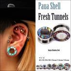 Body Piercing - 4G フレッシュトンネル ボディピアス 海のオパール パウアシェル