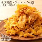 ドライマンゴー マンゴー 送料無料 1kg(500g×2) 種周り 切り落とし 不揃い 半生 ドライフルーツ 肉厚 セブ島 フィリピン 訳あり