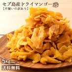 ドライマンゴー マンゴー 送料無料 5kg(500g×10) 種周り 切り落とし 不揃い 半生 ドライフルーツ 肉厚 セブ島 フィリピン 業務用 訳あり