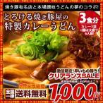 カレーうどん 焼き豚有名店のカレーうどん 3食セット (麺大盛り6人前) 送料無料 (セット パック)