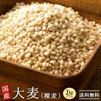 大麦 国産 はだか麦 1kg(500gx2) 送料無料