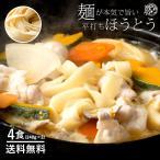 ポイント消化 (送料無料 500円ポッキリ) 麺が本気で旨い 平打ちの生麺 ほうとう セット お試し 4人前 福袋 送料無料 ( 特産品 名物商品 )