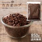 カカオニブ 無添加 お徳用 850g [ スーパーフード カカオ 送料無料 ポリフェノール 食物繊維 美容 健康 チョコ カカオ豆 ビター] 1kgより少し少ない850g