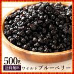 ブルーベリー ドライブルーベリー  野生種 500g ドライフルーツ  [ ワイルドブルーベリー ドライ フルーツ 乾燥果実 大容量 お徳用 送料無料 ]