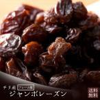 レーズン 大粒 ジャンボレーズン 850g 送料無料 フレーム種  [ ほしぶどう 干しぶどう ドライフルーツ 乾燥 果物 大容量 間食 低脂質 ] 1kgより少し少ない850g
