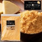 シーズニング パウダー チーズ 大容量 500g 送料無料 [ ポップコーン 粉 スパイス ポテト フライドポテト 味 文化祭 祭り 屋台 ] SALE セール