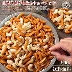 カシューナッツ 柿の種 送料無料 大容量 500g 山盛り柿の種とカシューナッツ 柿の種プラスで止まらない美味しさ [ あられ おかき お菓子 かきのたね