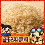 玄米 国産 発芽玄米 1kg (500g×2) 玄米 送料無料 雑穀 業務用