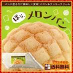 メロンパンクリーム 「ほら、メロンパン」 Hデキシー&メロン 500g [ コッペパン 食パン デキシー 丸和油脂 ]