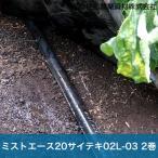 住化農業資材 灌水チューブ マルチ下 無マルチ ミストエース20サイテキ02L-03 WB8328 100M×2巻 70mまで均一潅水 潅水チューブ 灌水チューブ 散水