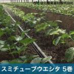 住化農業資材 灌水チューブ ハウス向け スミチューブウエシタ WB8531 200M×5巻 60mまで均一潅水 潅水チューブ 灌水チューブ 散水チューブ 潅水 灌水