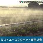 住化農業資材 灌水チューブ ミストエース20ポット育苗 WB8380 100M×2巻 60mまで均一散水 潅水チューブ 灌水チューブ 散水チューブ 潅水 灌水 散水