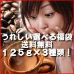 コーヒー コーヒー豆 送料無料 選べるコーヒー豆福袋 125g×3種類