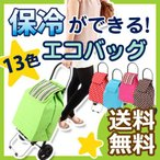 ショッピングバッグ キャリーカート キャリーバッグ キャスター付き 保冷 保温 エコバッグ おしゃれ かわいい