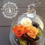 選べる4色♪幸せを贈る『幸運のうさぎ〜ラパン・フランボワーズ』プリザーブドフラワー ガラスドーム
