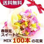春の誕生花スペシャル!スイ-トピーミックス100本の花束