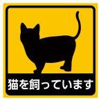 家に猫がいます 家にネコがいます ステッカー 車 耐水 メール便